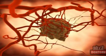 kanseri önleyen besinler