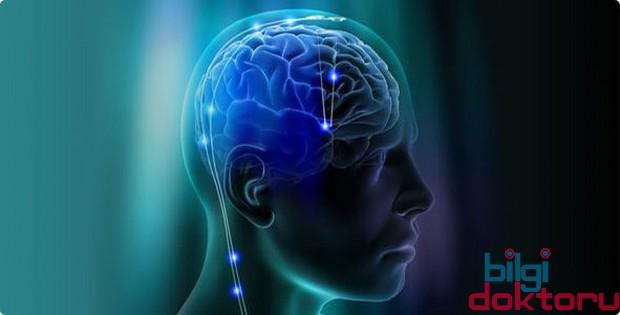 zerdaçal hafıza güçlendiriyor