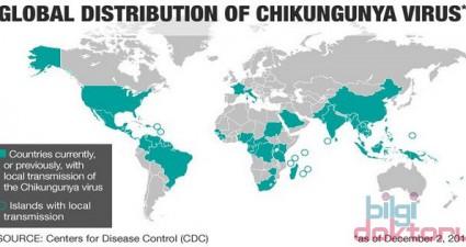 Chikungunya Hastalığı