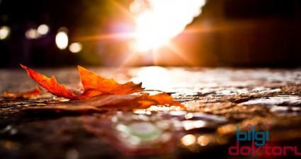 Sonbahar Aylarının Sağlığımıza Etkileri