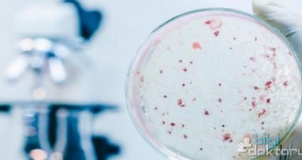 Herpes-Simplex-Virusu-Pankreas-Kanseri