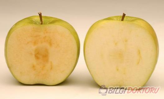 kesilince-ici-kararmayan-elmalar-uretimi