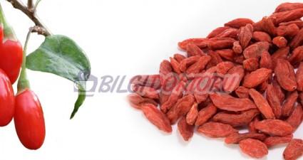 goji-berry-meyvesinin-faydalari