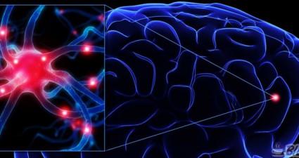 travmatik-beyin-hasarlari