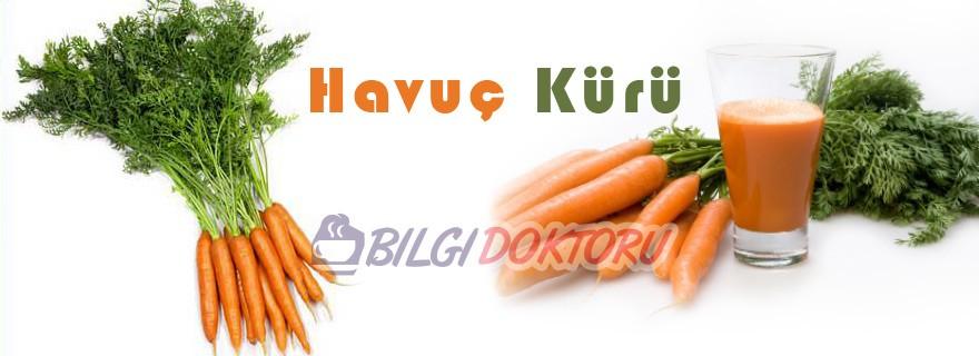 unutkanliga-havuc-kuru-ibrahim-saracoglu