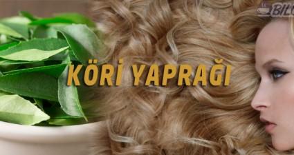 kori-yapragi-sac-uzatma