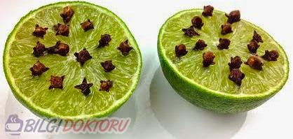 sivrisineklere-limon-karanfil