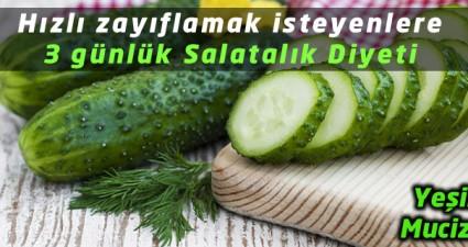 hizli-zayiflatan-salatalik-diyeti