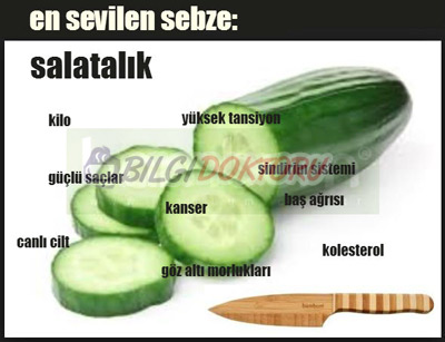 salatalik-diyeti-zayiflama