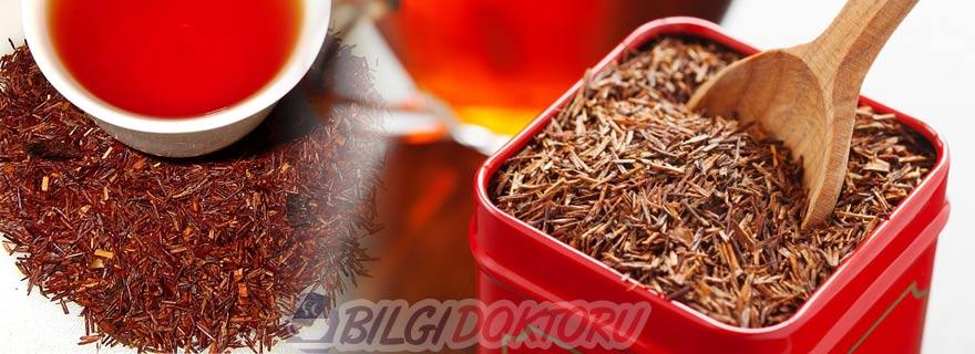 Rooibos Çayı (Aspalathus Linearis)