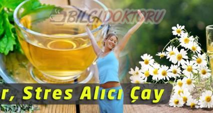 Strese ve Sinire Karşı Sakinleştirici Bitki Çayı