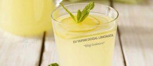 Ev yapımı doğal limonata tarifi